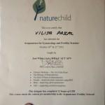 fertility diploma