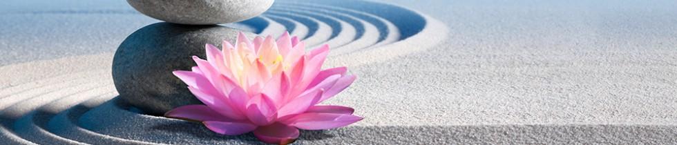 Lotus Clinic
